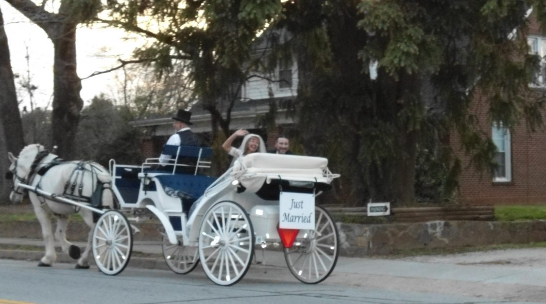 Just Married horse and carriage